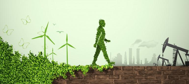 O papel do poder publico na economia sustentável