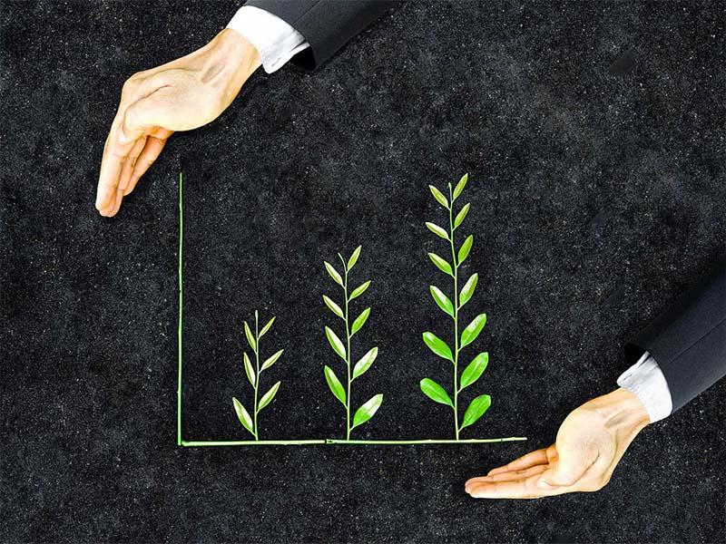 Sustentabilidade – Lideranças